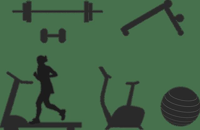 circuit fitness training