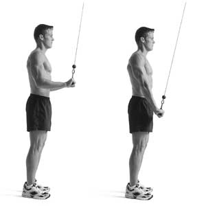 Triceps oefeningen: Cable triceps pulldown