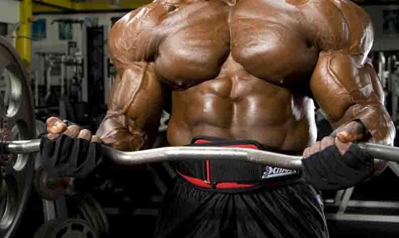 9 kilo droge spiermassa in 12 weken? Het kan.