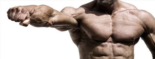 Anabole steroïden gebruiken?