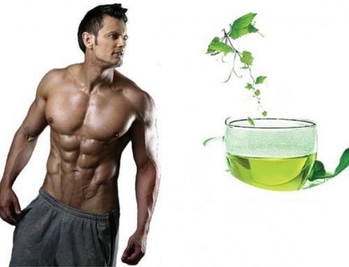 Groene thee extract, een vergeten fatburner