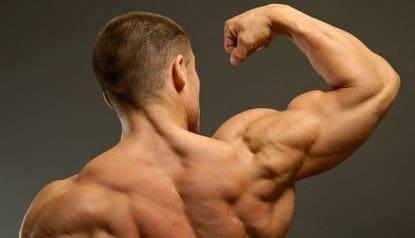 grote schouders