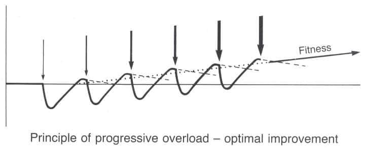 progressieve overloading