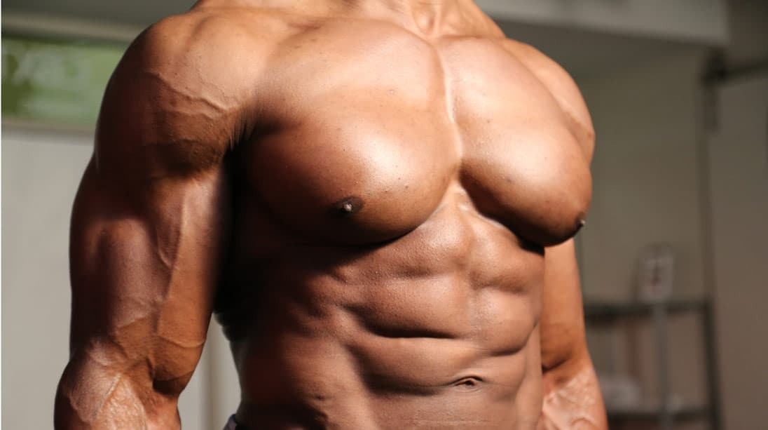 borst spieren