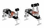 Decline chest press en variaties