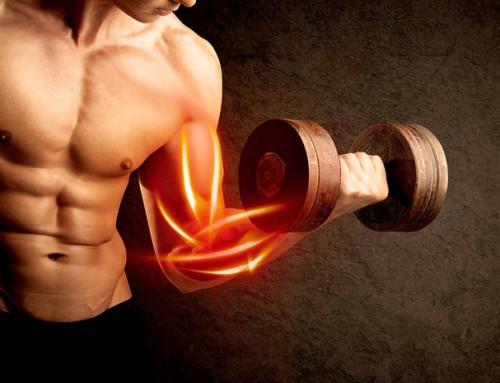 De ultieme biceps training met beste oefeningen en schema