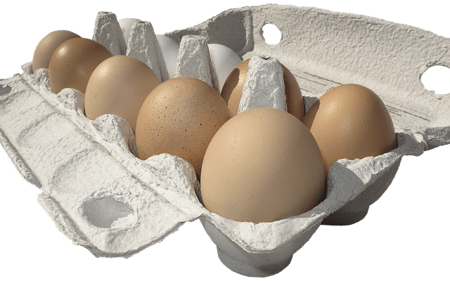 vloeibaar ei eiwit