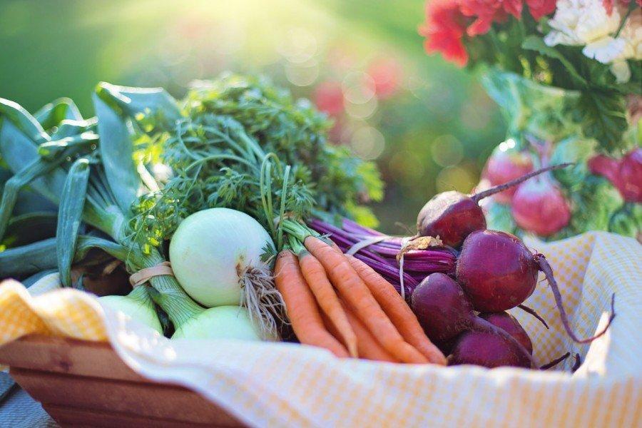 welke voedingsmiddelen verlengen levensduur